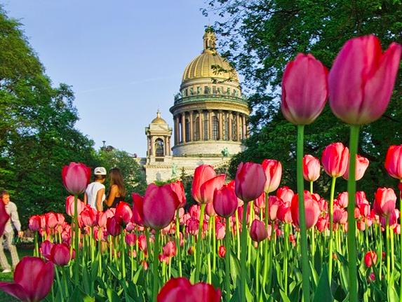 Цветы доставка цветов оптовая по россии, метро киевская магазин цветов